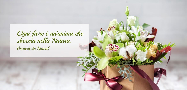 banner-fiori